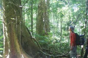 Trekking in Nam Ha NPA