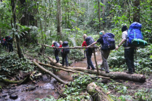 2 Days Trek- Nalan Trail & Community Adventure