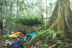 3 Days Trek in Nam Ha NPA-The only Jungle Camp Specialist
