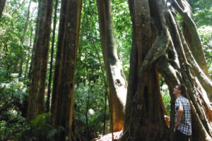 1 Day Trek-Explore Nam Ha National Protected Area